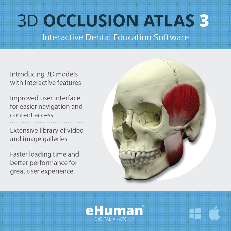 Head and Neck Anatomy 3 | eHuman