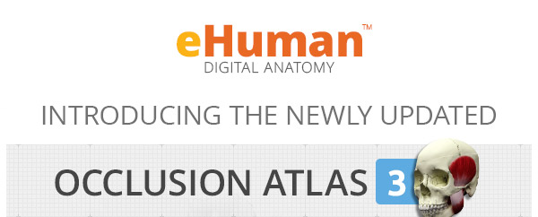 eHuman Introduces the newly updated Occlusion Atlas 3
