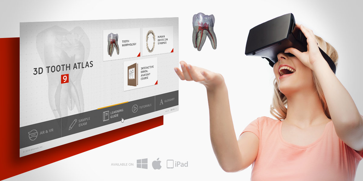 3D Tooth Atlas 9 to be unveiled at ADEA 2018